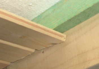 Decke Im Gartenhaus Mit Profilbrettern Verkleiden
